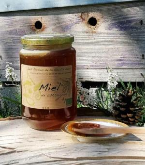 Miel de châtaignier bio des Jardins de la Goutte d'eau, en Ardèche